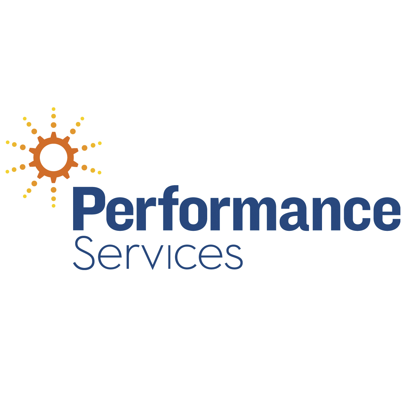 Performance Services 2016 copy