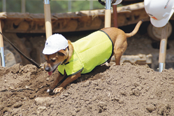 /2018_08/Ingham-County-Animal-Control-Groundbreaking-Ceremony-2018-Granger-Construction-007-768x512.png